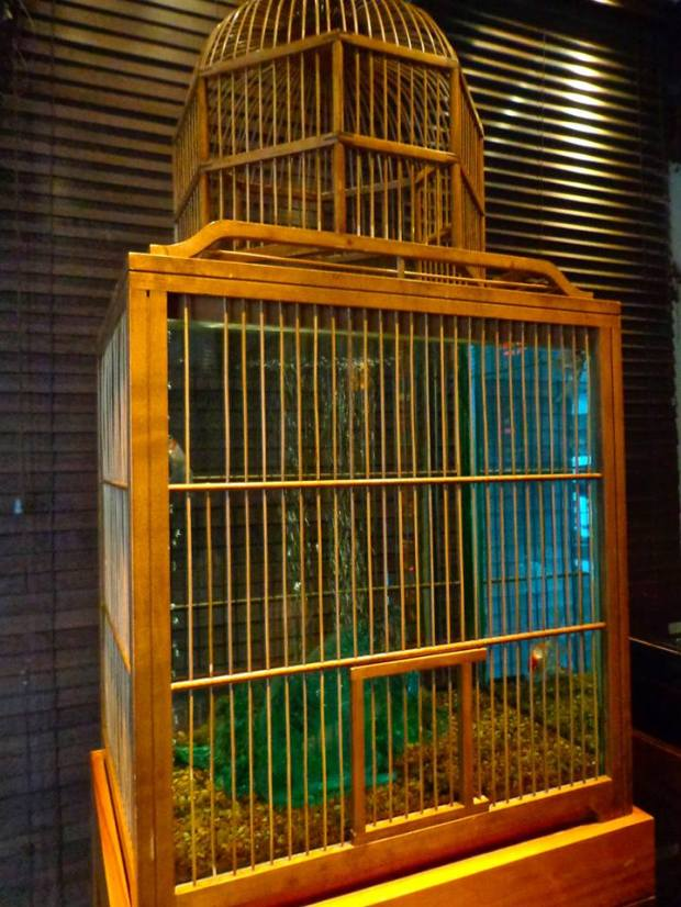 Kittichai Restaurant South Village New York Brunch Bird Cage Aquarium