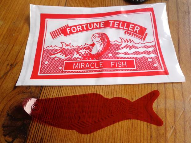 The Mermaid Inn New York City East Village fortune teller miracle fish